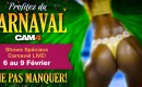 Le Carnaval de Rio s'invite sur Cam4
