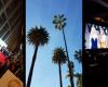 Au lendemain des L.A. XBiz Awards en porn free live